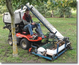 Walnut Harvester N Hubber